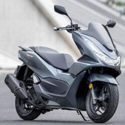 Pajak Pertahun Honda PCX