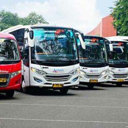 Macam Macam Karoseri Bus di Indonesia